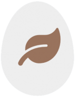 Icon Blatt